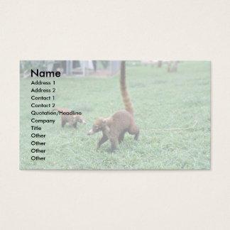 Coatis Business Card
