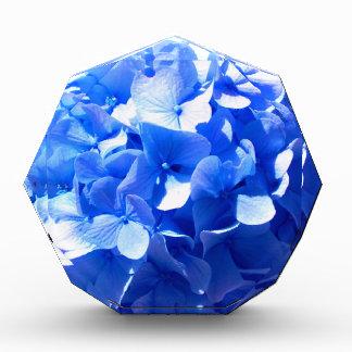 Cobalt Blue Hydrangea Acrylic Award