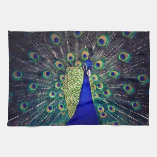 Cobalt Blue Peacock Kitchen Towels