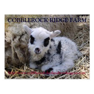 COBBLEROCK RIDGE FARM POST CARD