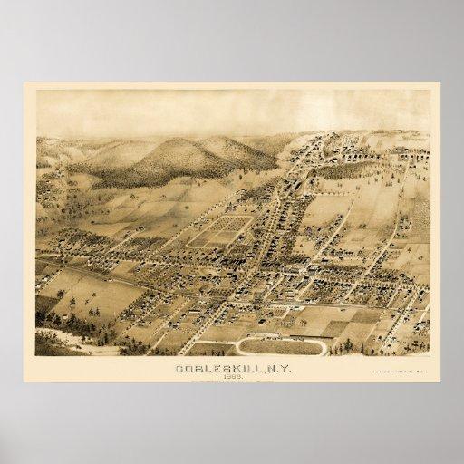 Cobbleskill, mapa panorámico de NY - 1883 Poster