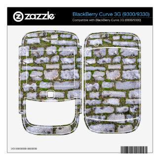 Cobblestone BlackBerry Skin