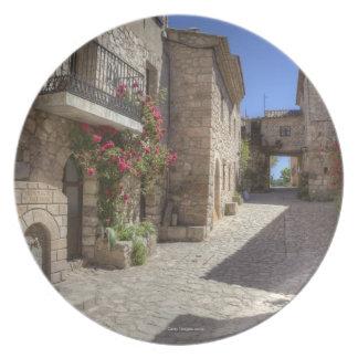 Cobblestone street, stone buildings, historic melamine plate