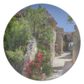 Cobblestone streets, historic stone buildings. plate