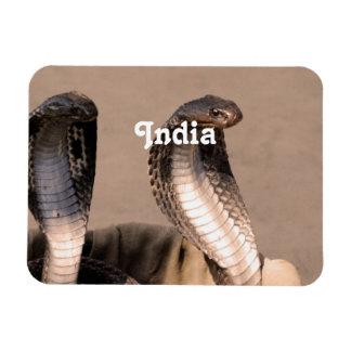 Cobra de la India Imán Rectangular
