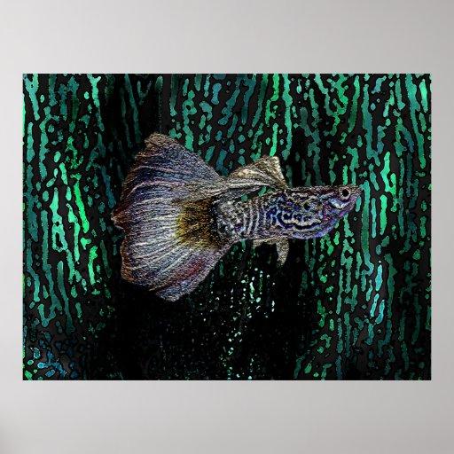 Cobra fish in Digital Art Poster