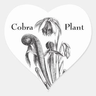 Cobra Plant, Carnivorous Plant Heart Sticker