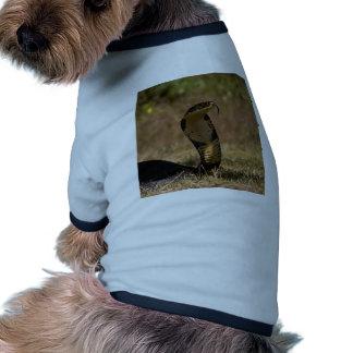 Cobra real camisetas de perrito
