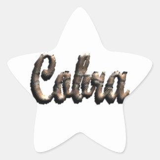 Cobra - threedimensional snake skin text - star stickers