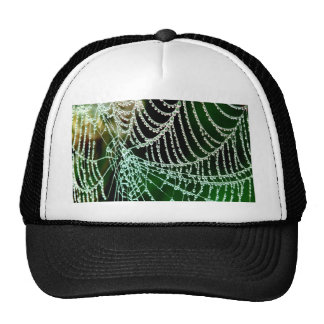cobweb and  dewdrop peace and calm trucker hat