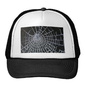 Cobweb Trucker Hat