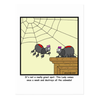 Cobwebs: Spider cartoon Post Card