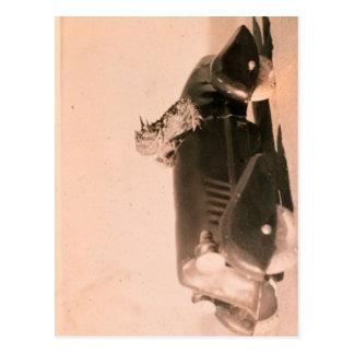 Coche córneo del sapo tarjetas postales
