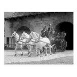 Coche de bomberos traído por caballo, 1922 tarjetas postales