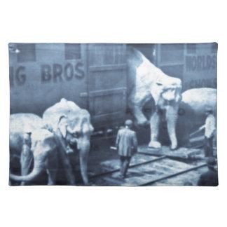 Coche de ferrocarril de Ringling de los elefantes Manteles