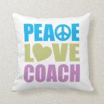 Coche del amor de la paz almohadas