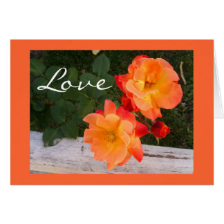 Coche floral del saludo del amor anaranjado adapta felicitaciones