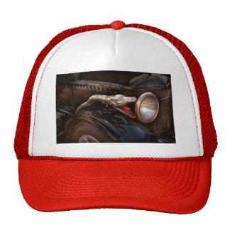 Coche - vapor - encantador de serpiente gorros bordados