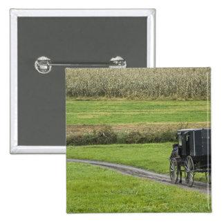 Cochecillo de Amish en el carril de la granja, Ohi Pin Cuadrado