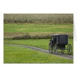 Cochecillo de Amish en el carril de la granja, Ohi Tarjetón