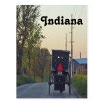 Cochecillo de Amish Tarjeta Postal