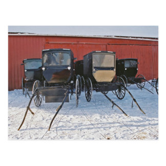 Cochecillos de Amish en Esperar-Postal