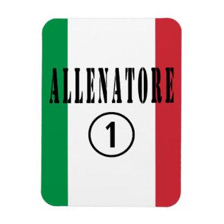 Coches italianos: Uno de Allenatore Numero Imán Flexible