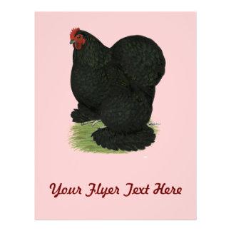 Cochin Black Hen Personalized Flyer