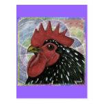 Cochin:  Cabeza decorativa del gallo Tarjetas Postales