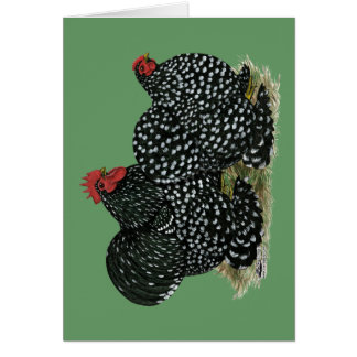 Cochin Mottled Chicken Pair Card