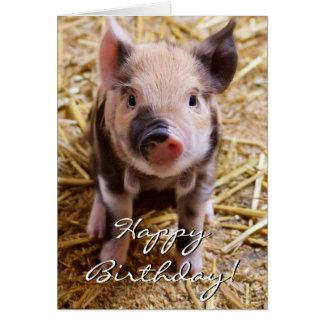 Cochinillo del feliz cumpleaños tarjeta de felicitación