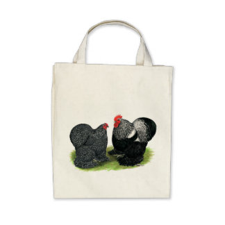 Cochins:  Silver-penciled Bags