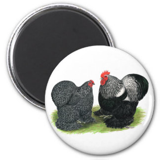 Cochins:  Silver-penciled Fridge Magnet
