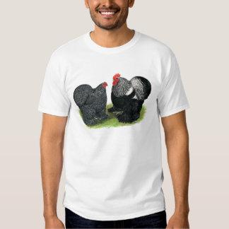 Cochins:  Silver-penciled T-Shirt