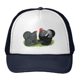 Cochins:  Silver-penciled Trucker Hat