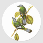 Cochoa verde pegatinas redondas