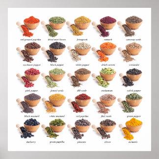 Cocina de la carta de la especia/poster revisados póster