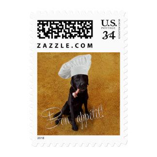 Cocinero de Labrador Sello