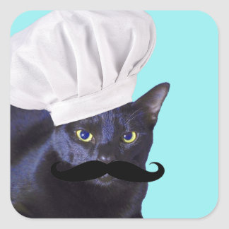 Cocinero italiano, gato negro