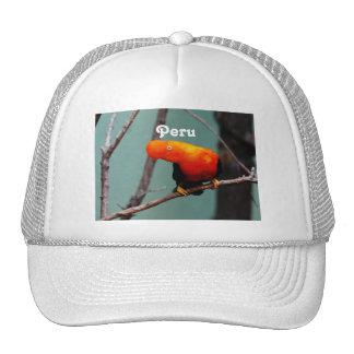 Cock on the Rock Trucker Hat