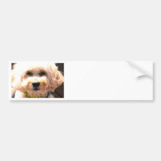 Cockapoo Bumper Sticker
