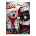 Cockapoo We Wish You Merry Christmas Greeting Card