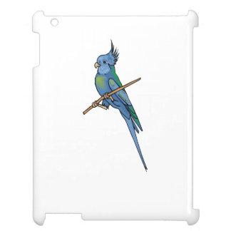 Cockatiel azul