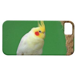 Cockatiel bird beautiful photo iphone 5 case mate