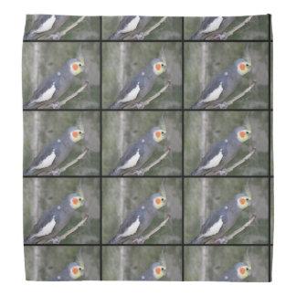 Cockatiel Bird Bandana
