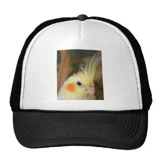 Cockatiel Cutie Trucker Hat