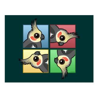 Cockatiel de cuatro colores postales