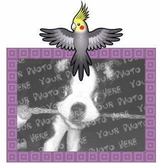Cockatiel del dibujo animado imán fotoescultura