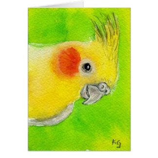 Cockatiel del peekaboo tarjeta de felicitación