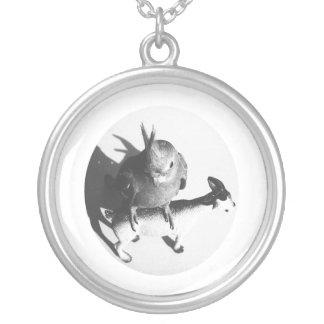Cockatiel en círculo del bw de la cabra colgante redondo